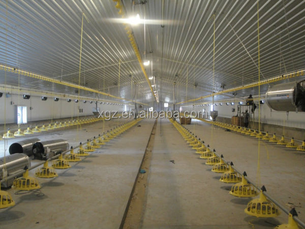Chicken Farm Steel Structure