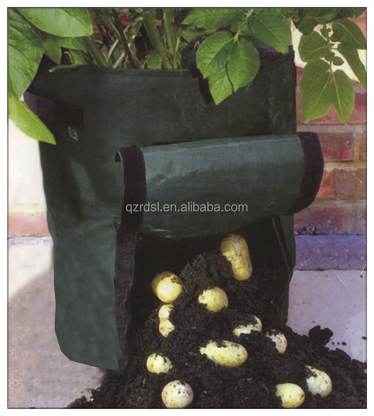 PE material potato plant bag