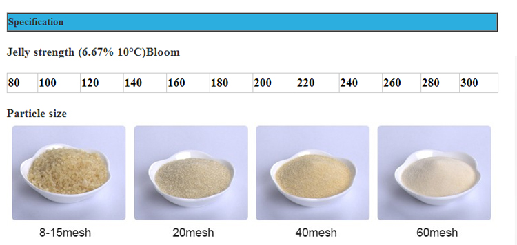 Fish scale kosher gelatin powder buy fish gelatin powder for Fish scale coke