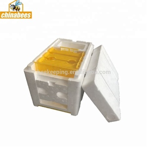 Apidea Mating Nuc bee hives for sale mini foam polystyrene bee box beekeeping starter kit
