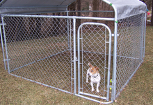 Outside Dog Kennels Large Outdoor Indoor Cage 10x10x6 Pets Animals Puppy Pen Box
