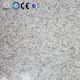 Chinese Muping White Granite G365