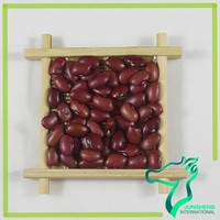 Square Red Kidney Beans Factor Price