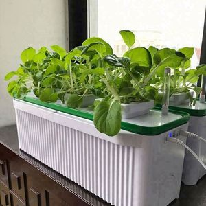 plant growing light new product