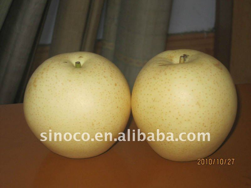 2011 Fresh Crown Pear Manufacture Suppliers