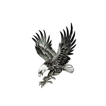 Wx 75 Eagle Design Body Art Transfer Temporary Tattoo Buy Temporary Tattoo Body Transfer Tattoo Body Art Tattoo Product On Alibaba Com