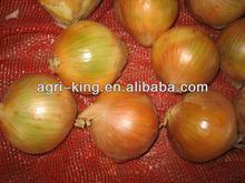 fresh green vegetables of cheap and natural red onions for sale