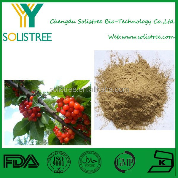 Acerola Cherry Extract Vitamin C/Asiatic Cornelian Cherry Fruit Extract Powder
