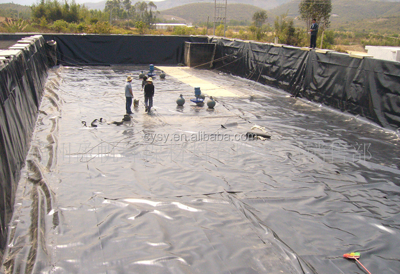 Cheap fish farm pond liner hdpe impermeable membrane for for Fish farming ponds