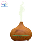 Amazon Top Seller 2018 Commercial 300ml Essential Oil Aroma Diffuser