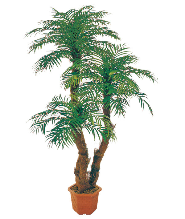 areca palme baum bonsai buy k nstliche bonsai k nstlich areka palmen k nstliche arecapalme. Black Bedroom Furniture Sets. Home Design Ideas