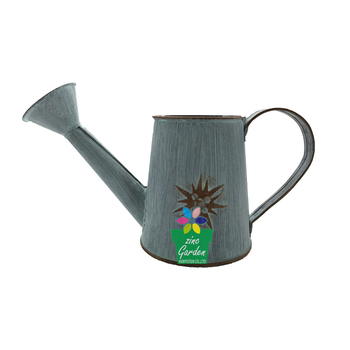 Hobby Lobby Custom Mini Decorative Galvanized Metal Watering Can Whole For Kids