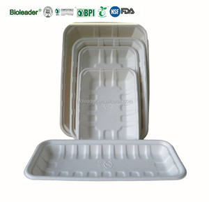 Disposable Recycled Bagasse Paper Food Tray