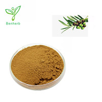 Natural Organic Olive Leaf Extract Powder