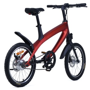 China S1 Big Tire Folding Electric Bike Supplier 500W
