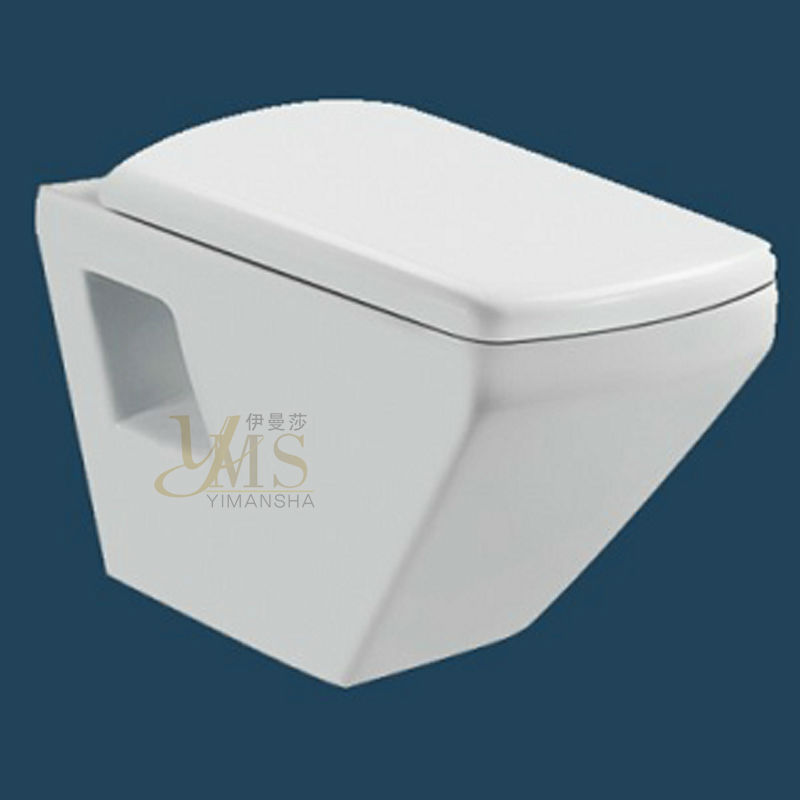 ceramic wall mounted toilet sanitary ware support