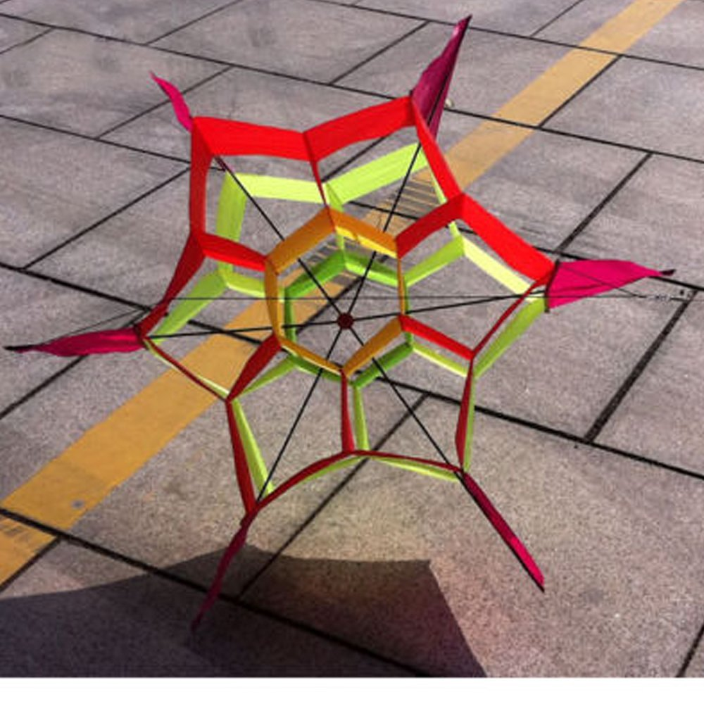 e93d5aeab8e4 Get Quotations · Hengda Kite Lotus Flower 3d Kite with Flying Tools