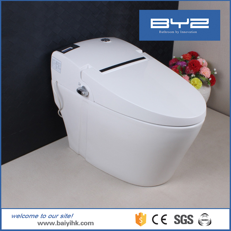 japanese self cleaning toilet. Clean Vagina Toilet Bidet  Suppliers and Manufacturers at Alibaba com