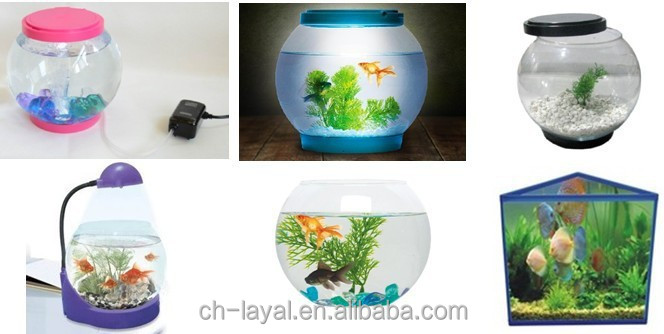 5 Liter Triangle Glass Fish Tank Kit With Artificial Plant And ...