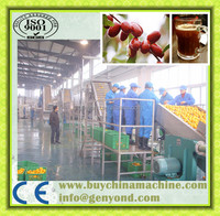 Buy date palm juice processing line in China on Alibaba.com
