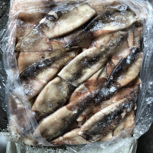 Frozen BQF Todarodes Squid /Illex squid Tube with Skin