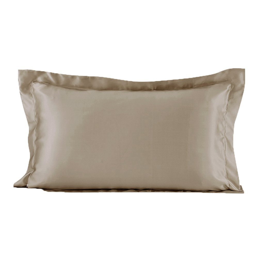 LILYSILK 19 Momme Oxford Silk Pillowcases for Hair 100% Mulberry Pure Mulberry Silk Taupe Standard 20x30 inches