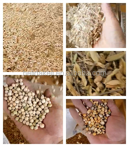 Bermuda grass seed process machine