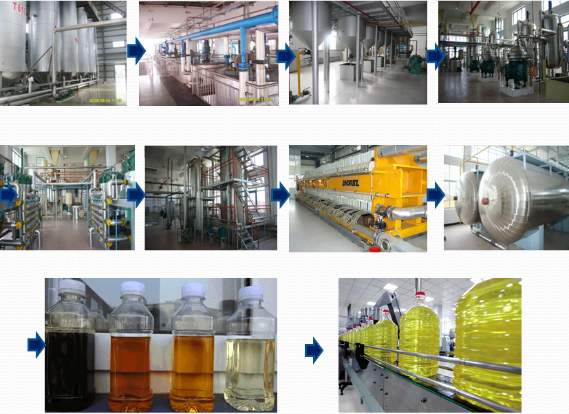 Rapeseed oil making machine with reasonable price