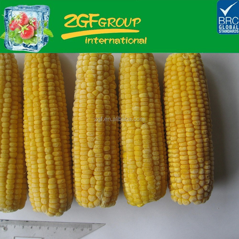 New Crop IQF importers frozen sweet corn