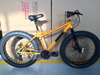 new design 29er 24 speed fat tire bike fat mountain bicycle snow bike