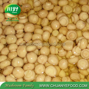 Cheap Sliced Champignon in Brine in Drum Button Mushroom