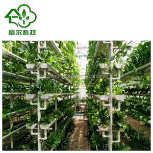 Vertical indoor hydroponic growing systems