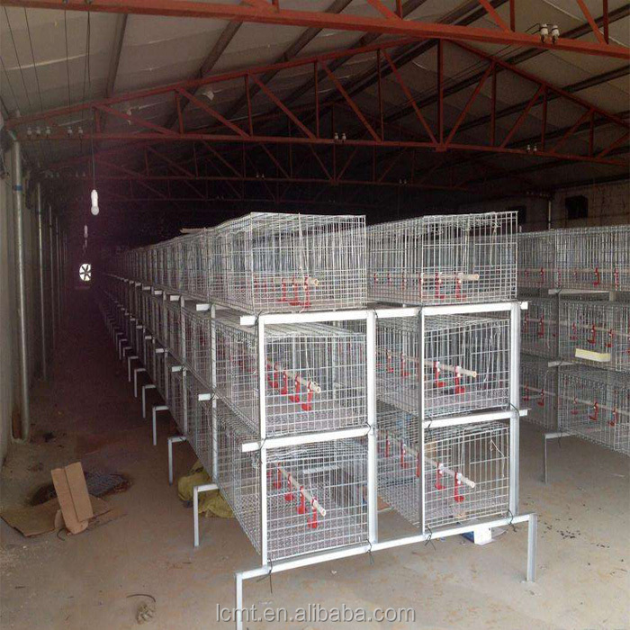 China liaocheng best broiler chicken cage, welcome to consult Mandy