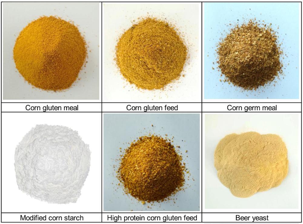 Mais glutine alimentazione mangimi bovini alimenti contenenti sali minerali alla rinfusa