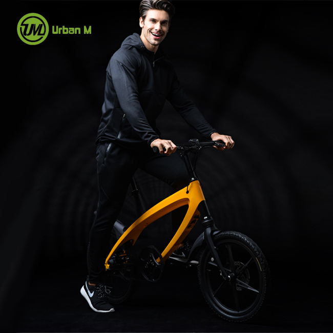 Full Suspension Mountain Electric Bike