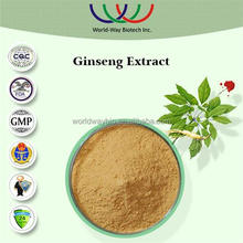 Free sample hot China supplier Ginseng Extract from stem and leaf, bulk stock wholesale panax ginseng 80% ginsenosides