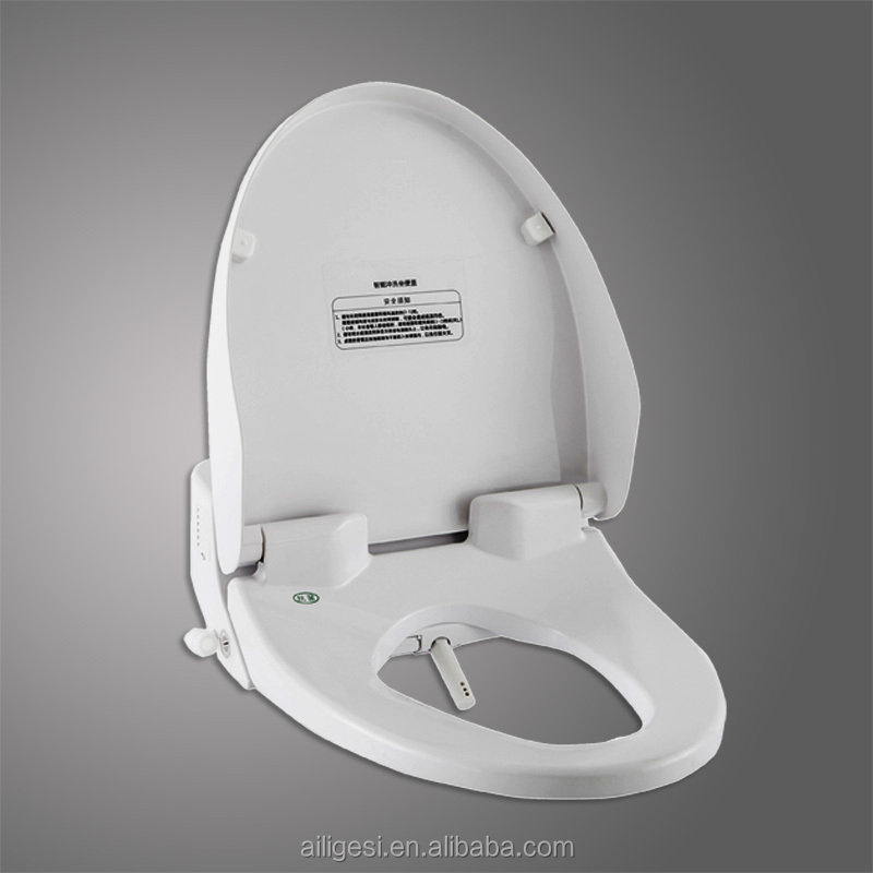 Remote Controlled Electric Heated Toilet Seat Bidet ZJF-02