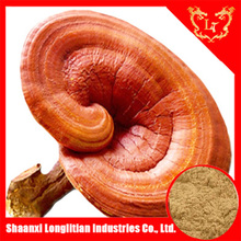 Hot sale reishi mushroom exract manufacturer, 10%-30% polysaccharide powder with low price