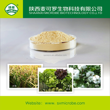 insecticide agrochemicals
