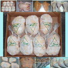 Best quality Wholesale frozen chicken