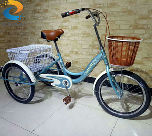 Turkey market three wheel cargo tricycle for sale