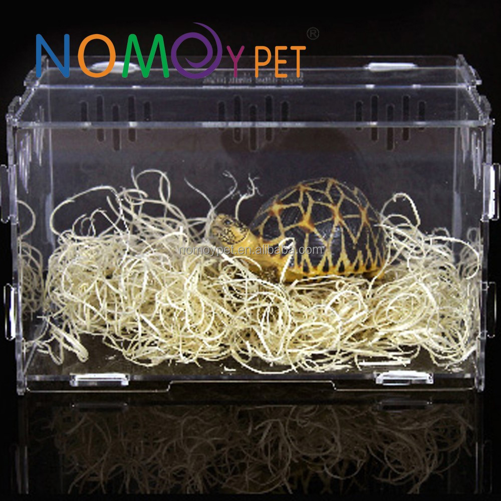 Nomo Craft Acrylic Reptile Terrarium Habitat, Ideal for Larvae spiders, ants, scorpions and other small reptiles