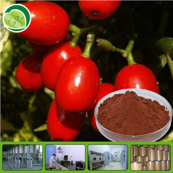 Chinese goji berry fruit Extract powder/fruit of barbary wolf berry exract polysaccharide 20%-70%