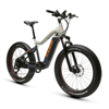 Suspension Bike Fat Tire Electric Beach Cruiser Bicycle Good Bike