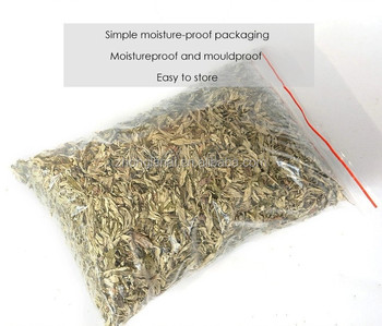 Bulk Supply dried wormwood and Mugwort dried leaf  for body bath