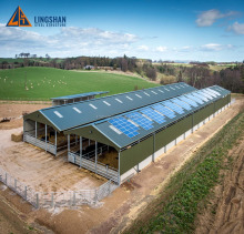 China design low cost prefabricated steel cow / cattle / sheep / horse shed / farm building / house / barn / byre