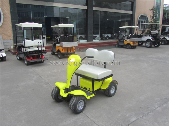 Stable quality personal electric vehicle with excellent quality parts and accessory