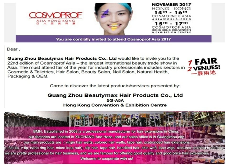 Beautymax Hair Products Co Ltd Hair Weftclip Hair