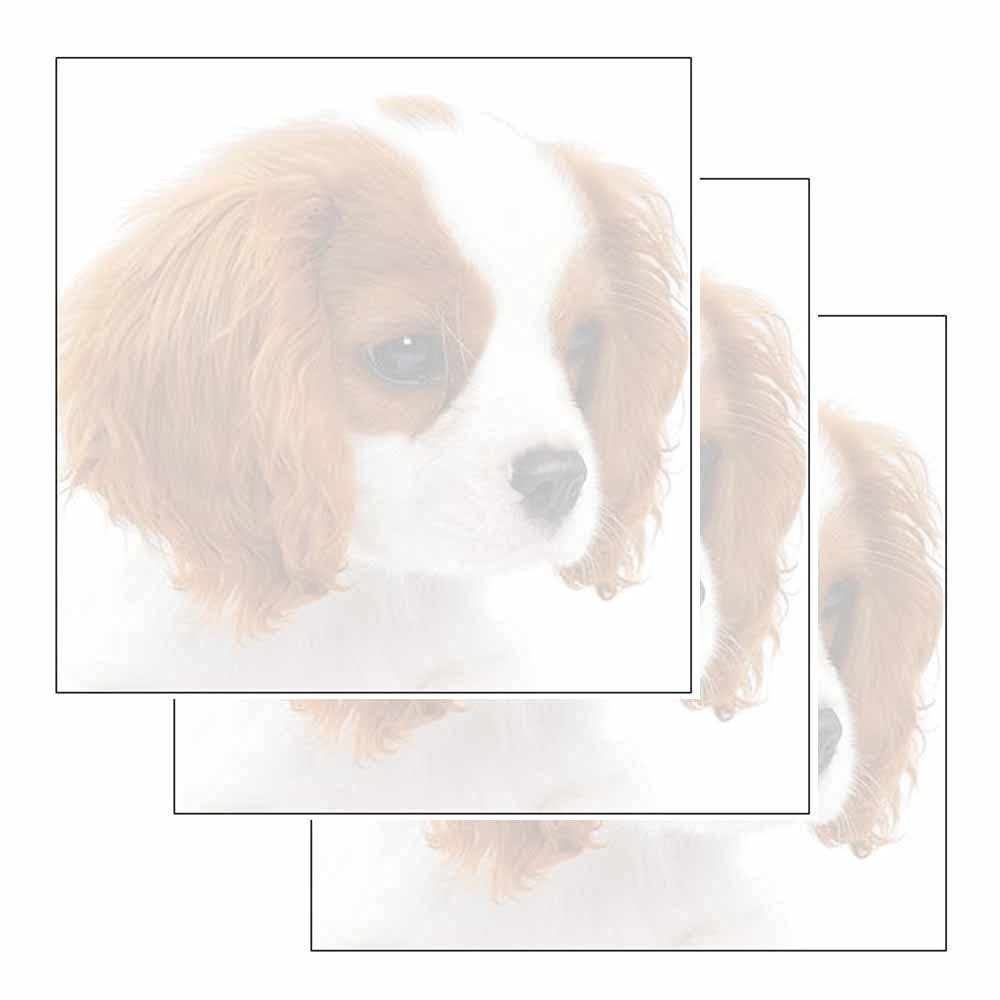 Puppy Dog Sticky Notes - Set of 3 - Animal Breed Theme Design - Stationery Gift - Paper Memo Pad - Office Business School Supplies