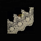 New design fashion polyester decorative lace trimming for garment accessories